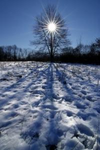 winterinspiration